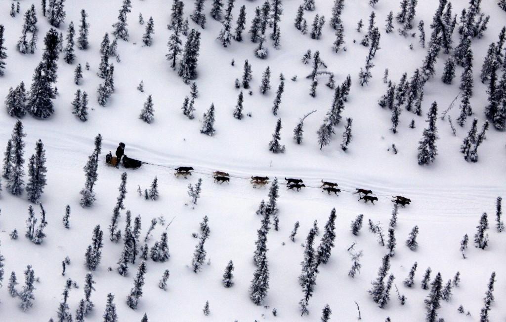 FILE - In this March 11, 2009 file photo Matt Hayashida of Willow, Alaska drives his team alone the Iditarod Trail Sled Dog Race trail near the Takotn...