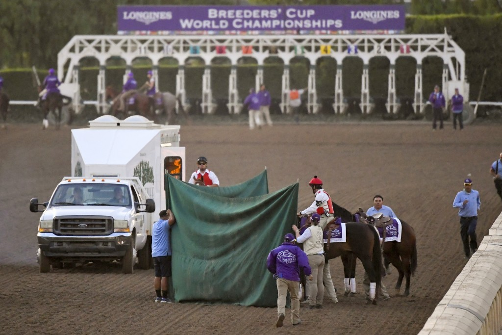 FILE - This Nov. 2, 2019, file photo shows track workers treating Mongolian Groom after the Breeders' Cup Classic horse race at Santa Anita Park, in A...