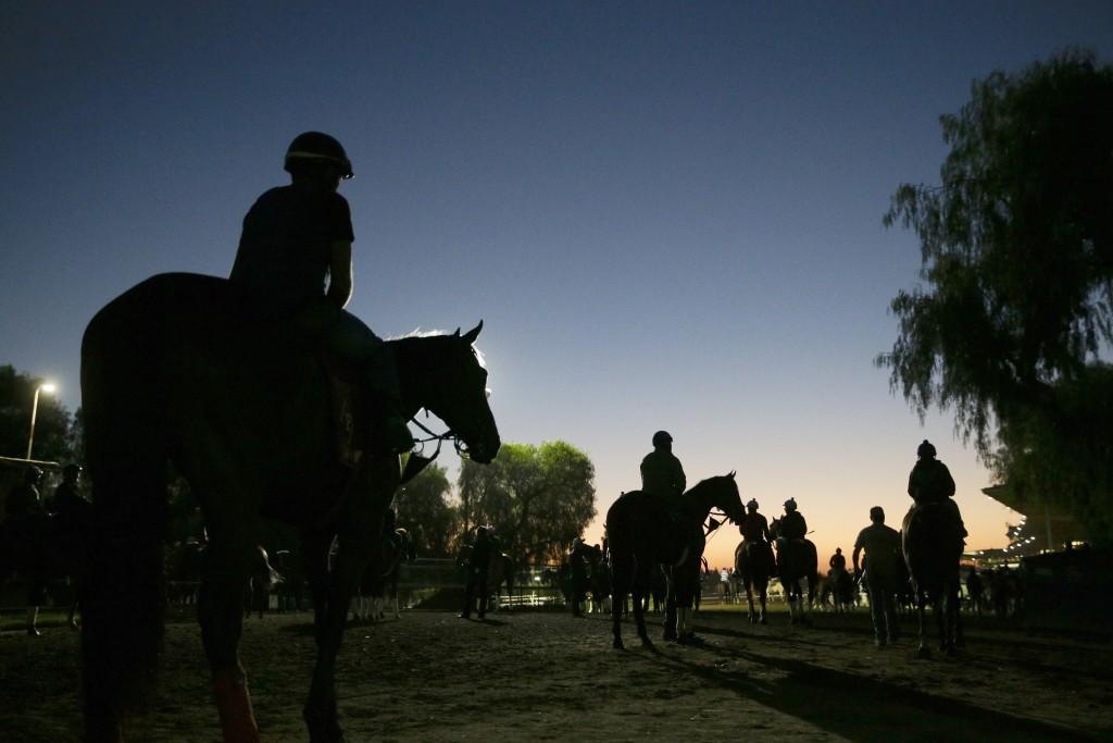 FILE - In this Oct. 29, 2014, file photo, riders and horses walk toward the track for a morning workout ahead of the Breeders' Cup races at Santa Anit...