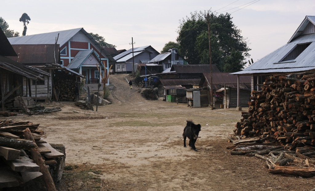 A dog walks in a deserted area as most people stay indoors in Shangshak village, in the northeastern state of Manipur, India, Sunday, March 22, 2020. ...