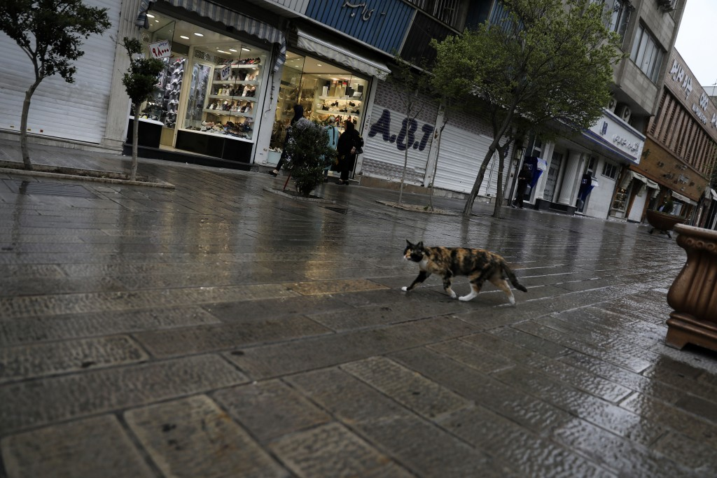 A cat walks in a mostly empty street in a commercial district in downtown Tehran, Iran, Sunday, March 22, 2020. On Sunday, Iran imposed a two-week clo...