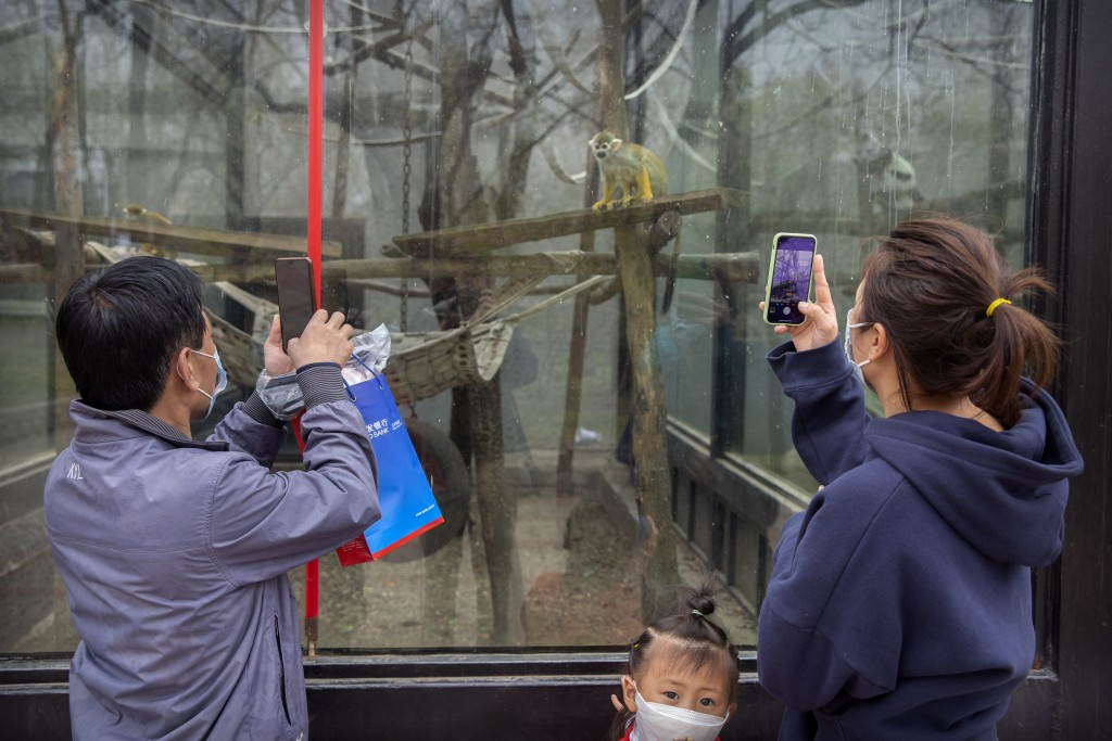 Visitors wearing face masks take photos of a primate exhibit at the Beijing Zoo after it reopened its outdoor exhibit areas to the public for the firs...