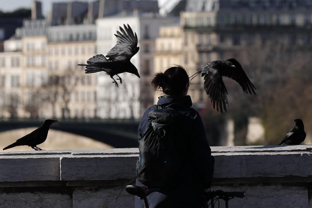A woman looks at crows on a bridge in Paris, Tuesday, March 24, 2020. French President Emmanuel Macron urged employees to keep working in supermarkets...