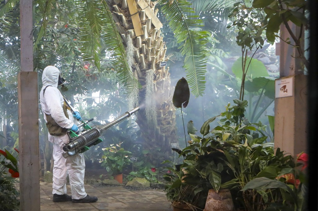 An employee disinfects in the Botanical Garden in Moscow, Russia, Wednesday, March 25, 2020. Moscow Mayor Sergei Sobyanin told Putin on Tuesday that t...