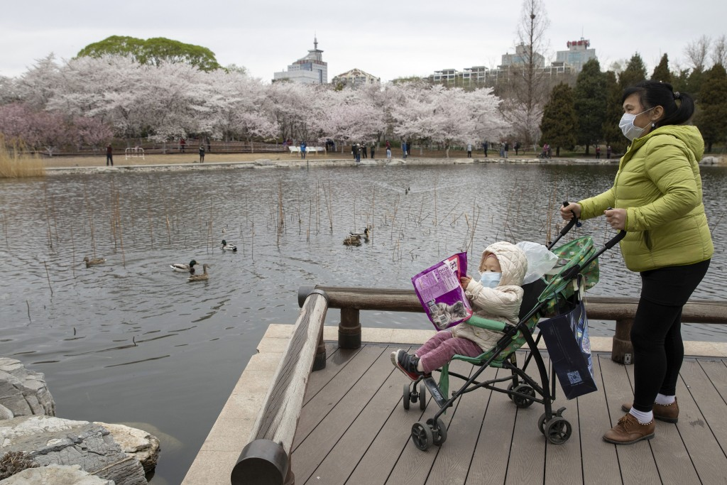 A woman pushes a child on a pram across from cherry blossoms at the Yuyuantan Park in Beijing on Thursday, March 26, 2020. While many of the city's wo...