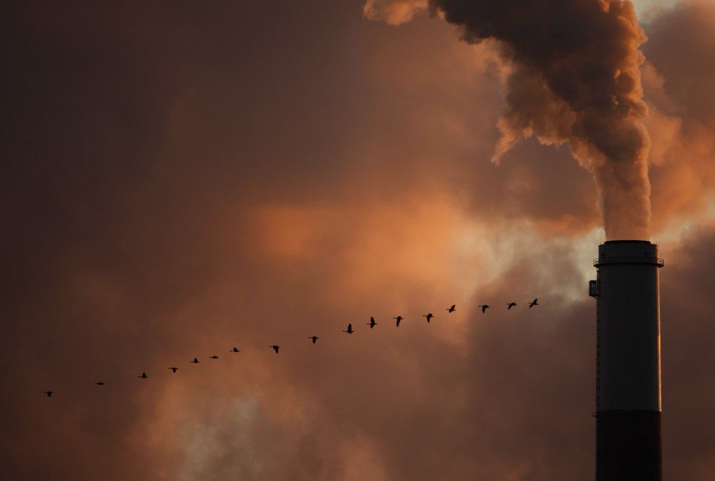 FILE - In this Jan. 10, 2009, file photo, a flock of geese fly past a smokestack at a coal power plant near Emmitt, Kan. The Trump administration is m...