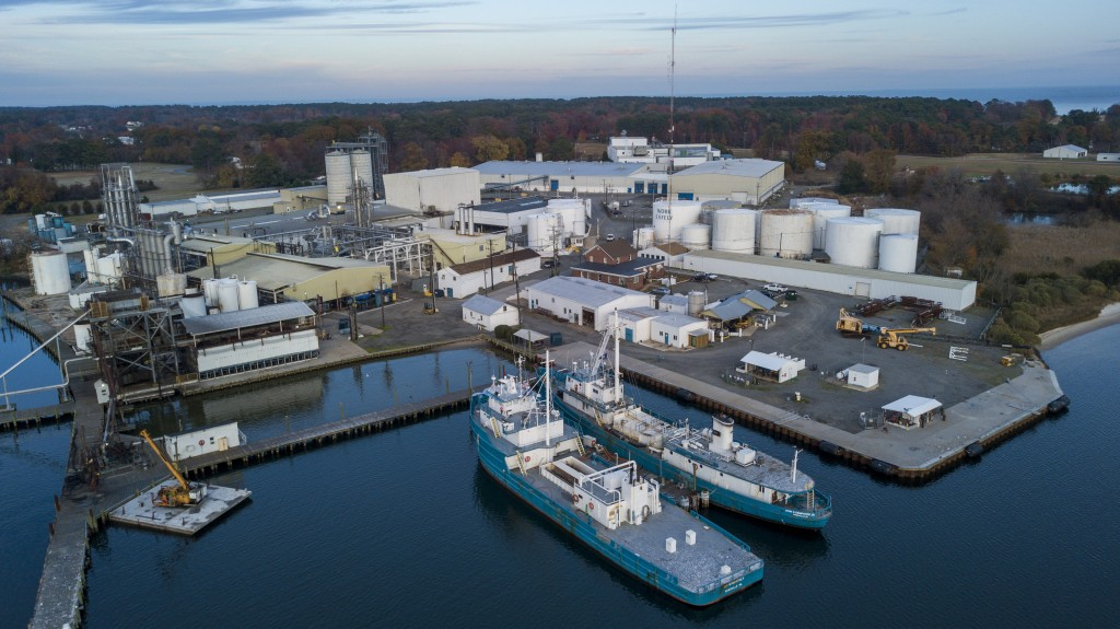 FILE - This Nov. 26, 209 file photo shows Omega Protein's menhaden processing plant on Cockrell's Creek in Reedville, Va., The company that makes fish...