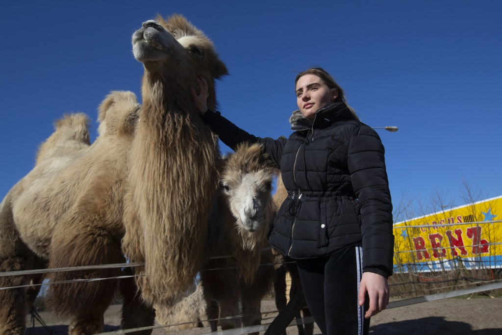 Madeleine Renz, an eighteen-year-old circus artist, strokes one of the eight Siberian Steppe camels, stranded due to the coronavirus outbreak in Drach...