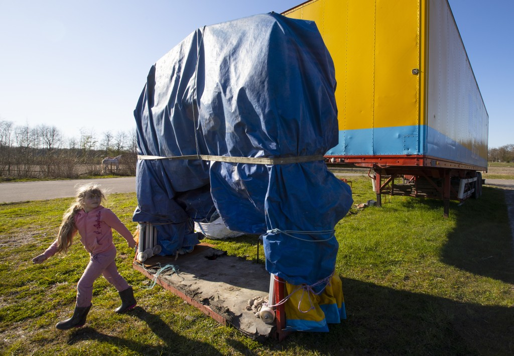 One of the children of the Renz Circus family plays around the stranded trucks and animals in Drachten, northern Netherlands, Tuesday, March 31, 2020....
