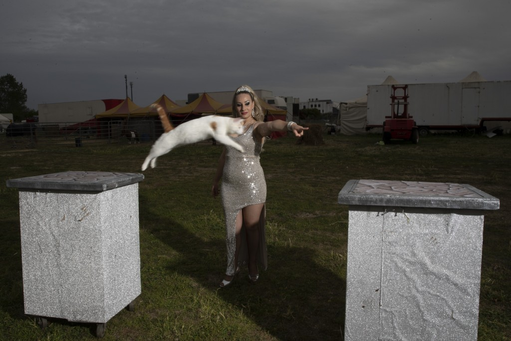 """Anamaria Bud shows her """"cat number"""" at the Romina Orfei Circus, parked in San Nicola la Strada, near Naples, Italy, Sunday, April 19, 2020. Anamaria a..."""