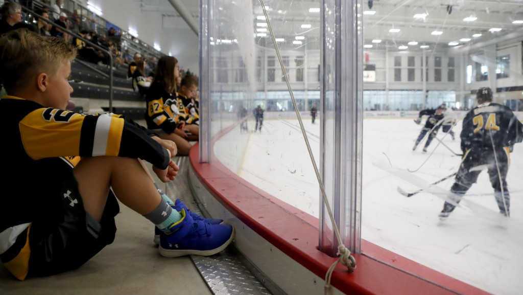 No timeline set for National Hockey League return