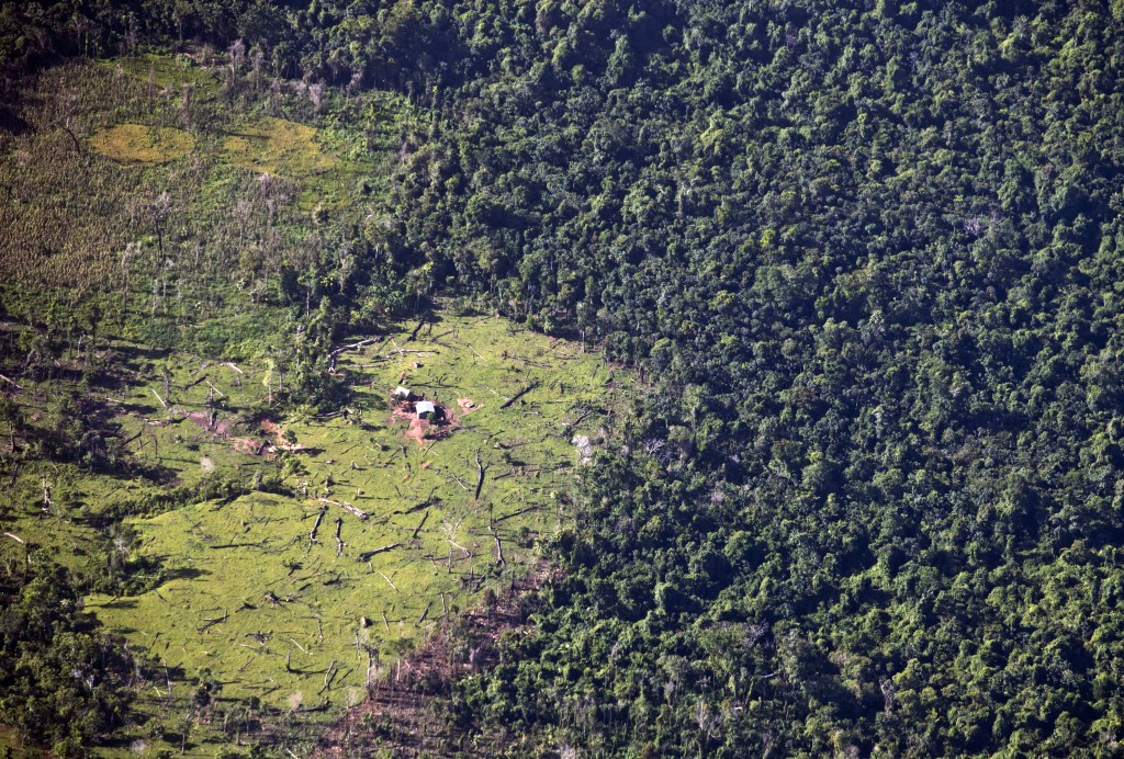 """FILE - This Sept.16, 2015 aerial file photo shows land cleared by """"settlers"""" who Miskito indigenous leaders accuse of seizing by force lands long cons..."""