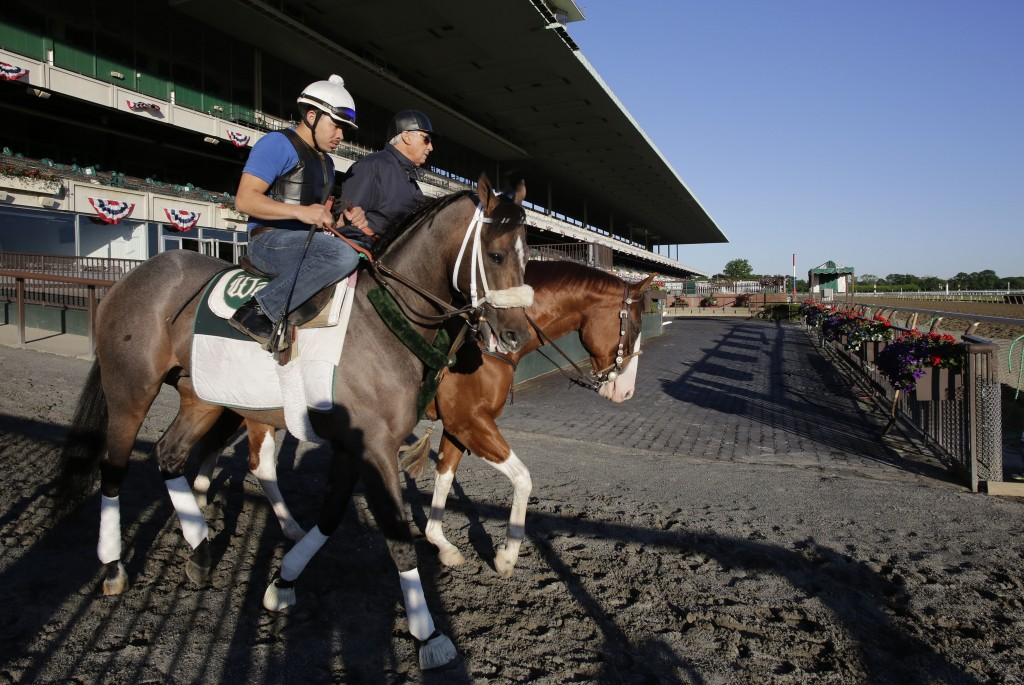 FILE - In this June 4, 2013, file photo, Preakness winner Oxbow, left, enters the track for a light workout at Belmont Park in Elmont, N.Y. Trainer D....