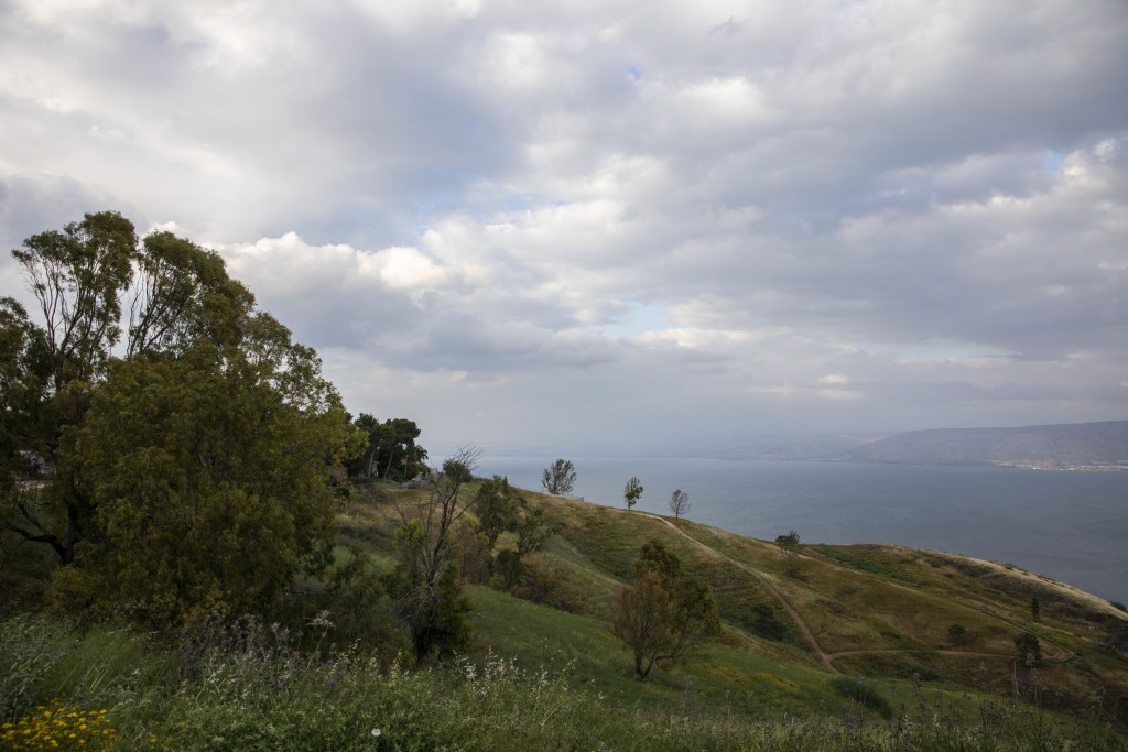 In this Saturday, April 25, 2020 photo, wildflowers bloom at an empty national park overlooking the Sea of Galilee, locally known as Lake Kinneret. Af...
