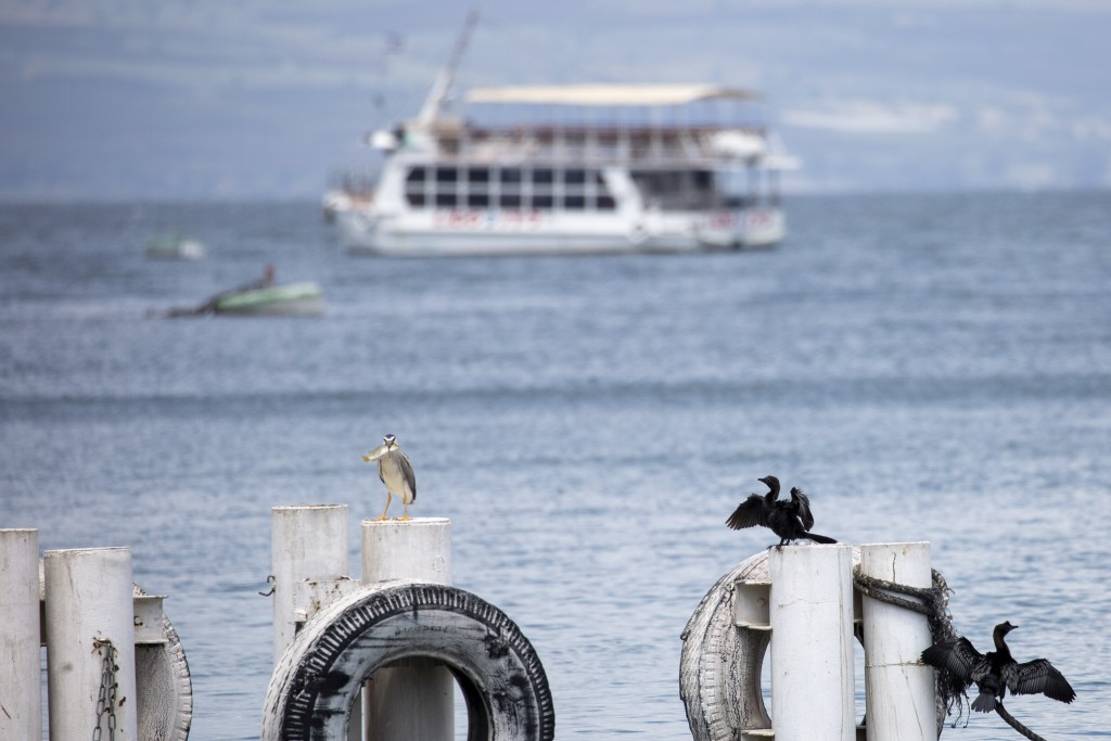 In this Saturday, April 25, 2020 photo, birds rest on as an empty tourist ship is anchored in the Sea of Galilee, locally known as Lake Kinneret. Afte...