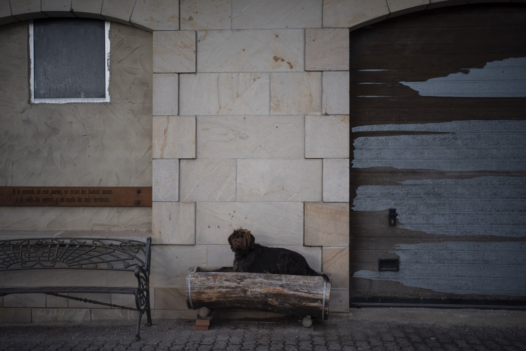 In this April 28, 2020 photo, a dog rests on the sidewalk of the main road in Duruelo de la Sierra, Spain, in the province of Soria. Many in Spain's s...