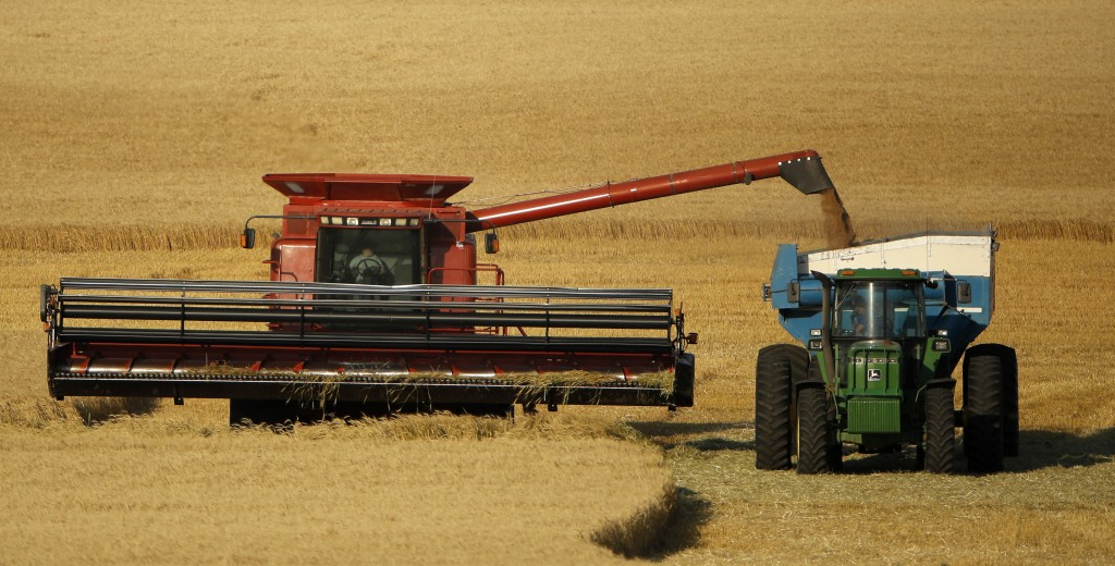 Wheat is harvested in a field. (AP Photo/Charlie Riedel, File)