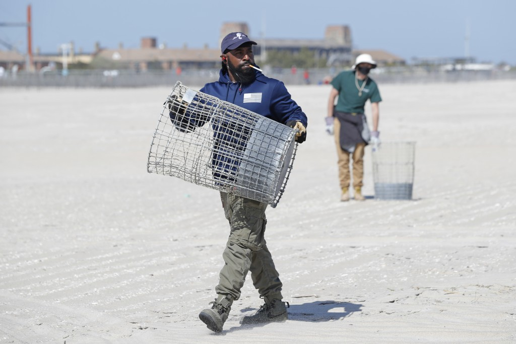 Workers set out trash cans in preparation for crowds flocking to the beach during the upcoming holiday weekend, Thursday, May 21, 2020, at Jones Beach...