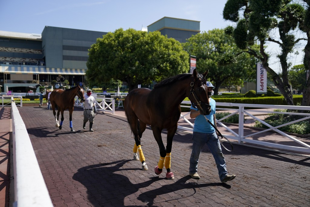 In this Friday, May 22, 2020 photo, grooms wearing face masks lead horses to the paddock at Santa Anita Park in Arcadia, Calif. Horse racing returned ...