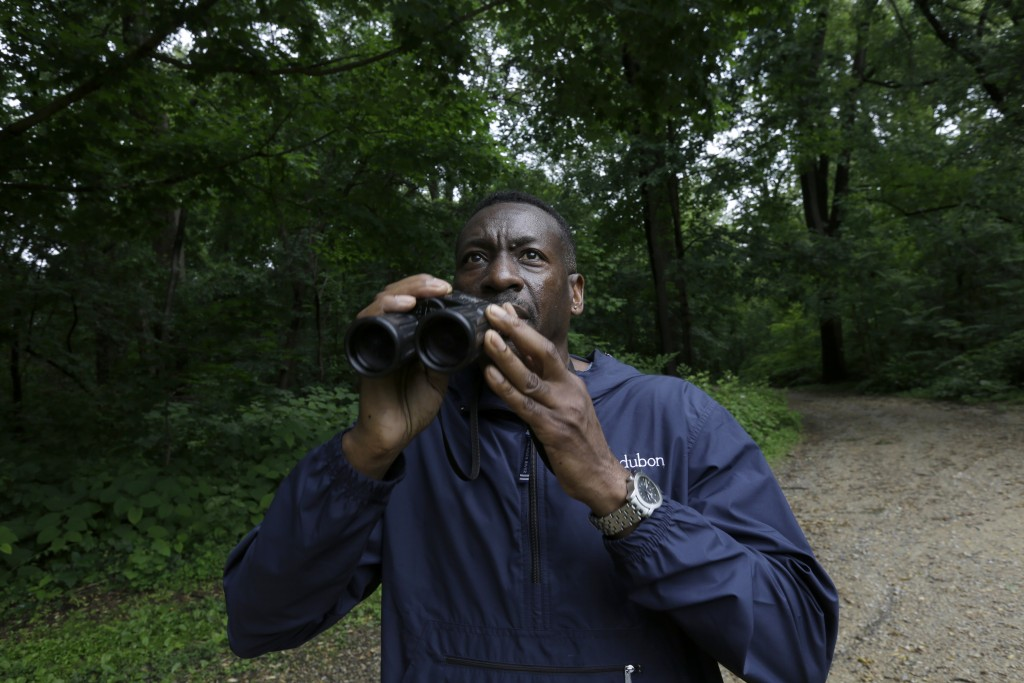 Keith Russell, program manager of urban conservation at Audubon Pennsylvania, lowers his binoculars while conducting a breeding bird census, at Wissah...