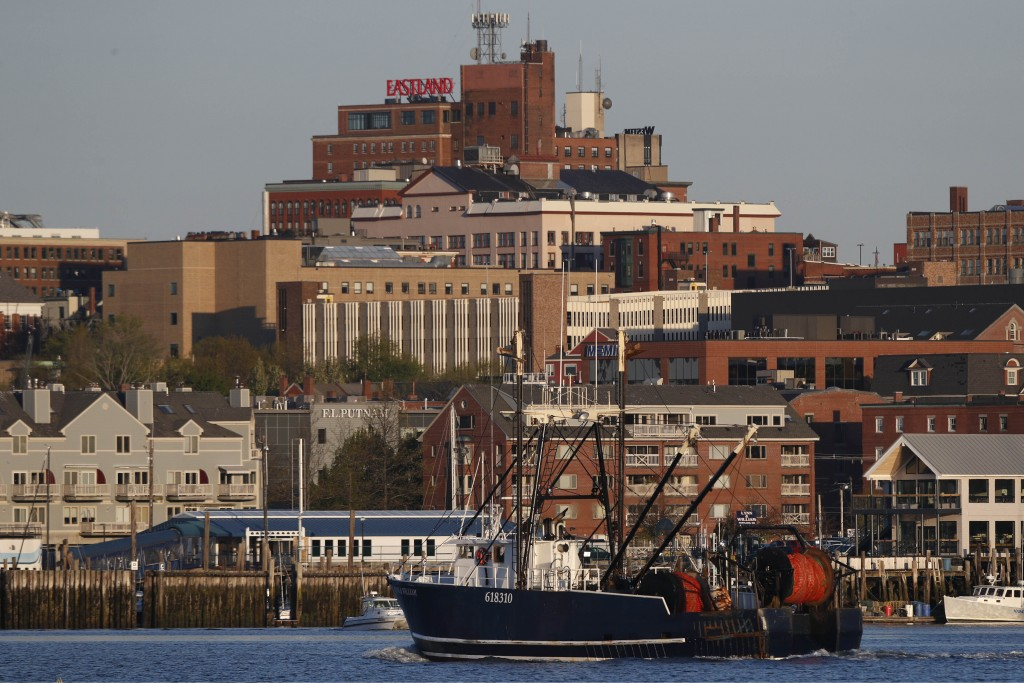 FILE - In this May 21, 2020, file photo a fishing trawler arrives in Portland, Maine. The amount of commercial fishing taking place worldwide has dipp...