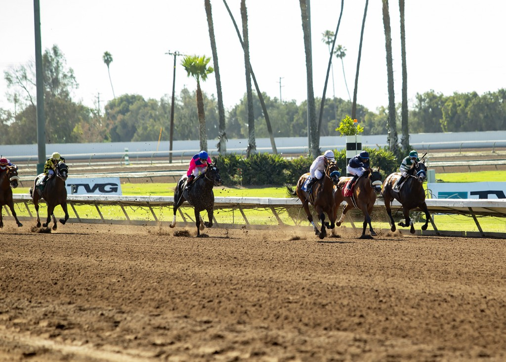 In this image provided by Benoit Photo, Sneaking Out, third from right, with Martin Garcia aboard, wins the Grade II, $200,000 Great Lady M Stakes hor...