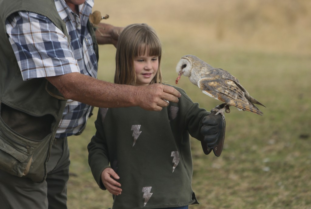 A child interacts with a bird at the bird sanctuary, Kuimba Shiri, near Harare, Zimbabwe, Wednesday, June, 17, 2020. Kuimba Shiri, Zimbabwe's only bir...