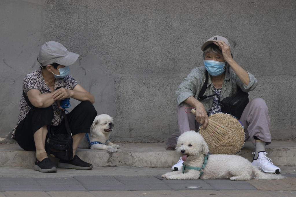 Elderly women wearing masks to curb the spread of the coronavirus chat as they sit on the sideway with their dogs in Beijing, China on Monday, July 13...
