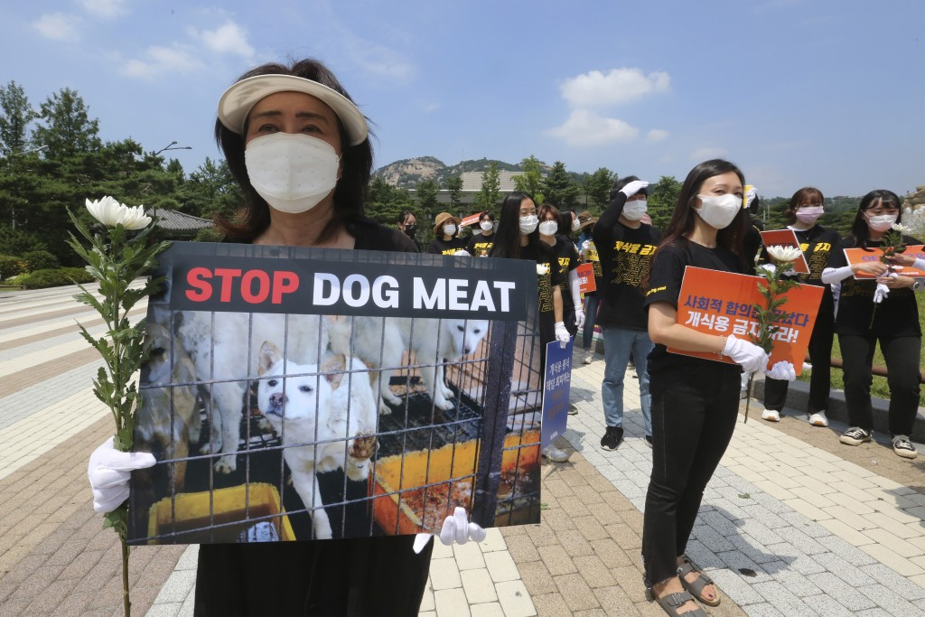 South Korean animal rights activists stage a rally opposing South Korea's culture of eating dog meat near the presidential Blue House in Seoul, South ...