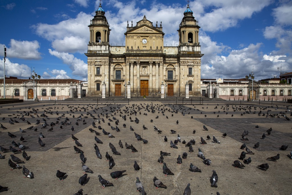 Pigeons stand in a deserted Constitutions square in front of the Metropolitan Cathedral during lockdown to stop the spread of the coronavirus in Guate...