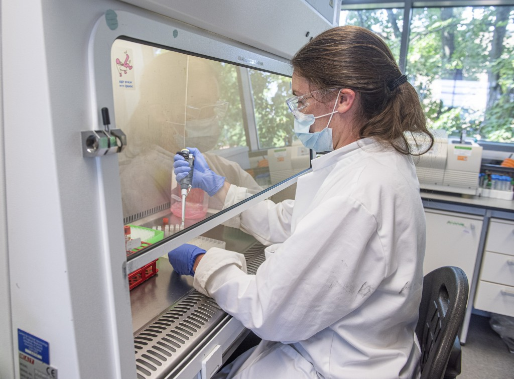 In this handout photo released by the University of Oxford samples from coronavirus vaccine trials are handled inside the Oxford Vaccine Group laborat...