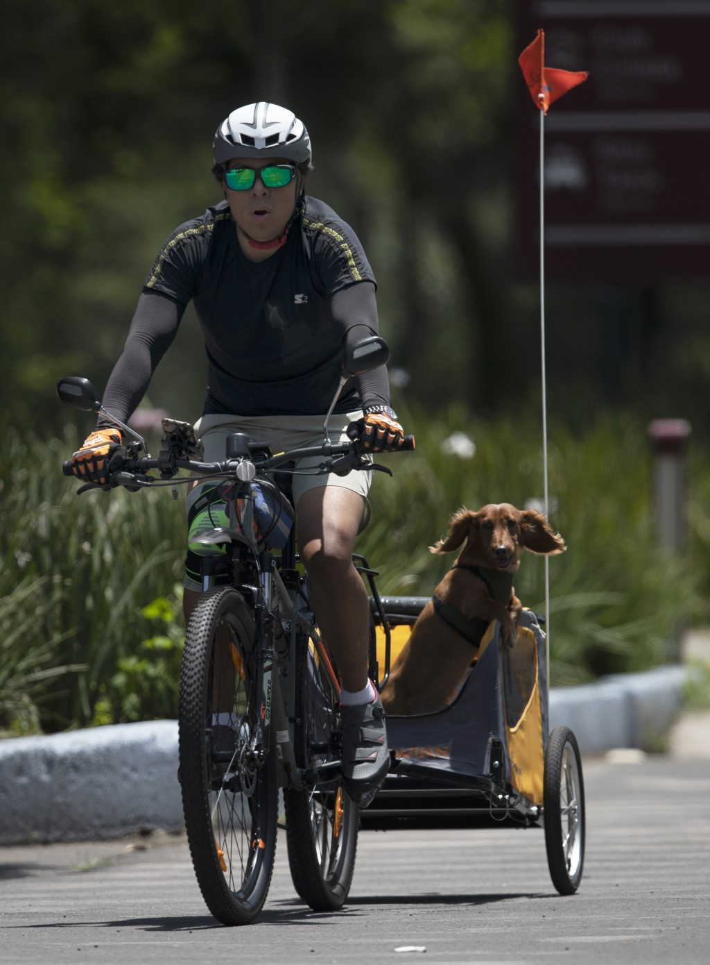 A man rides his bicycle with his dog in tow amid the new coronavirus pandemic at Chapultepec park in Mexico City, Sunday, July 19, 2020. (AP Photo/Mar...