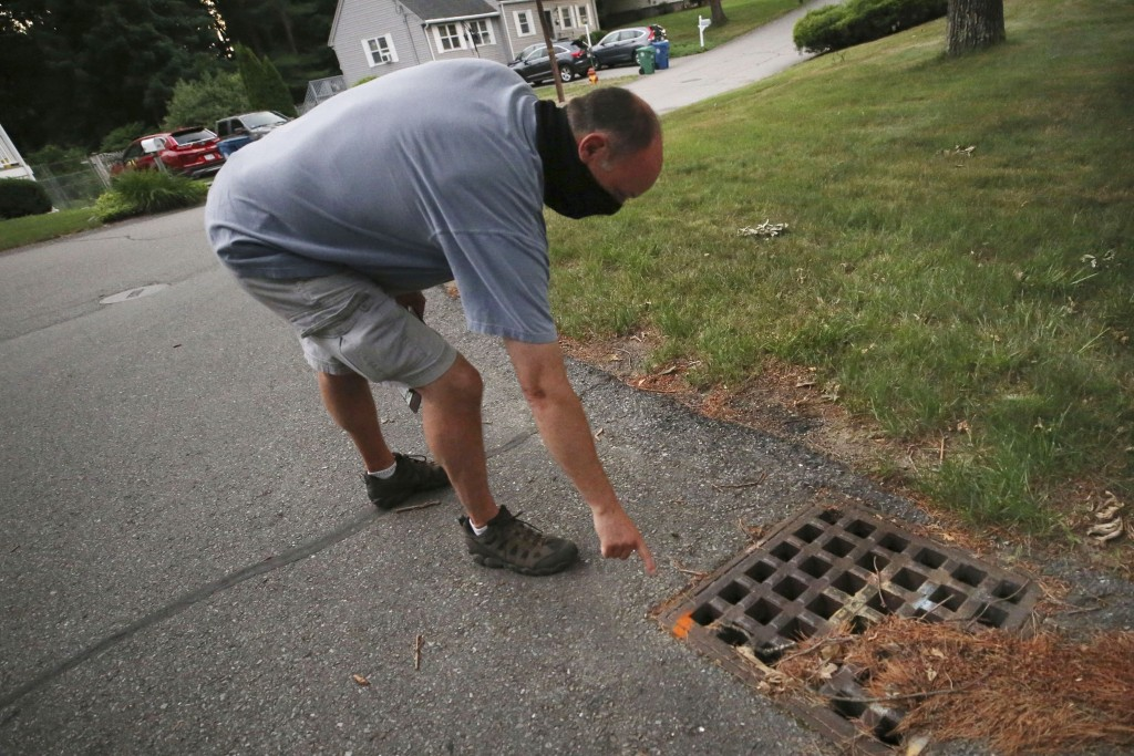 Chris Gagnon, field operations manager for the East Middlesex Mosquito Control Project, points out a paint marker to identify that a storm drain has b...