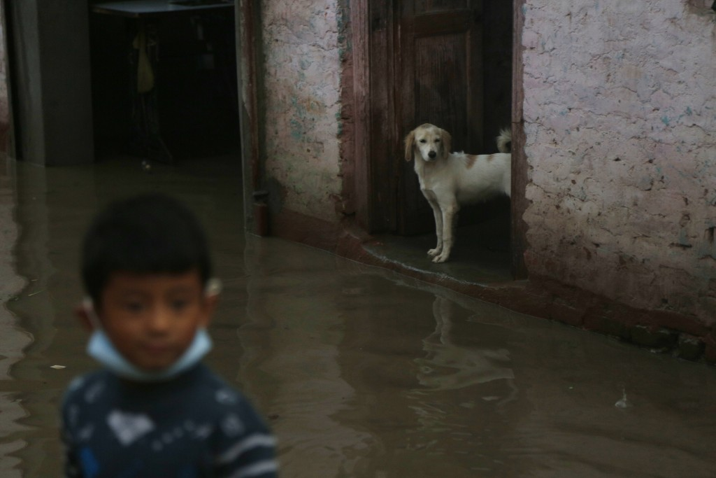 A dog stands at the doorway of a house as a boy walks through a flooded area on the bank of the Bagmati river after water levels receded in Kathmandu,...