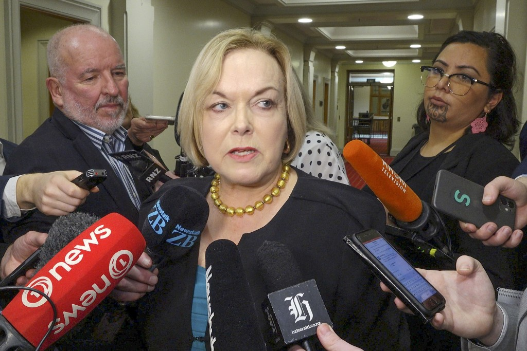 Judith Collins, leader of the New Zealand opposition National Party, speaks to reporters about former MP Andrew Falloon in Wellington, New Zealand, Tu...