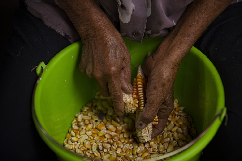 Catalina Vazquez shells corn in San Jeronimo Xayacatlan, a town in Mexico from which nearly a third of residents have emigrated to New York, Thursday,...