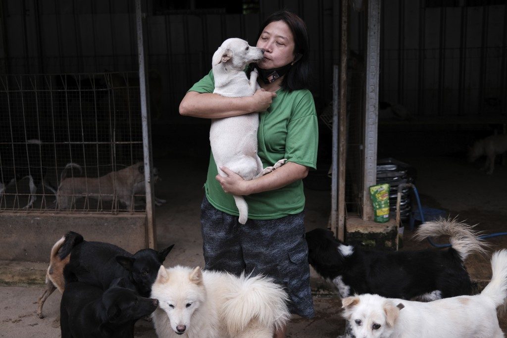 Susana Somali, center, carries a dog called 'White' at Pejaten Shelter, a home to more than 1,400 dogs which she runs, in Jakarta, Indonesia, Thursday...