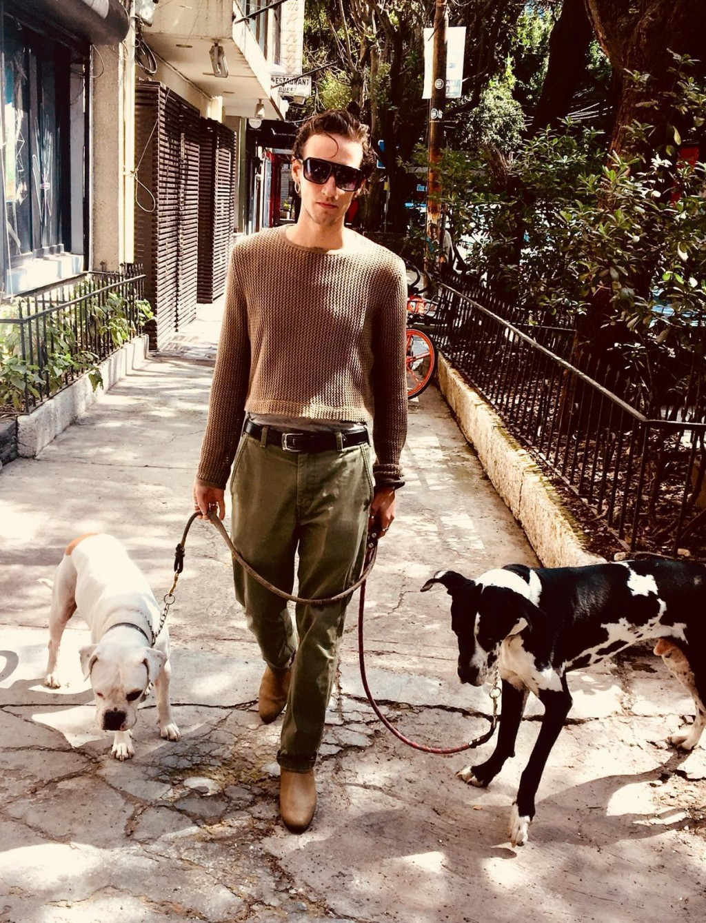 In this photo courtesy of Sophie Fustec shows her brother Pablo Fustec walking his dogs Sasha, right, and Felipe in Mexico City in Nov. of 2019. The d...