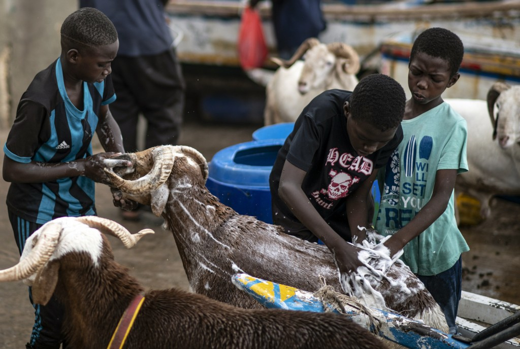 Children wash sheep with soap before they are offered for sale for the upcoming Islamic holiday of Eid al-Adha, on the beach in Dakar, Senegal Thursda...