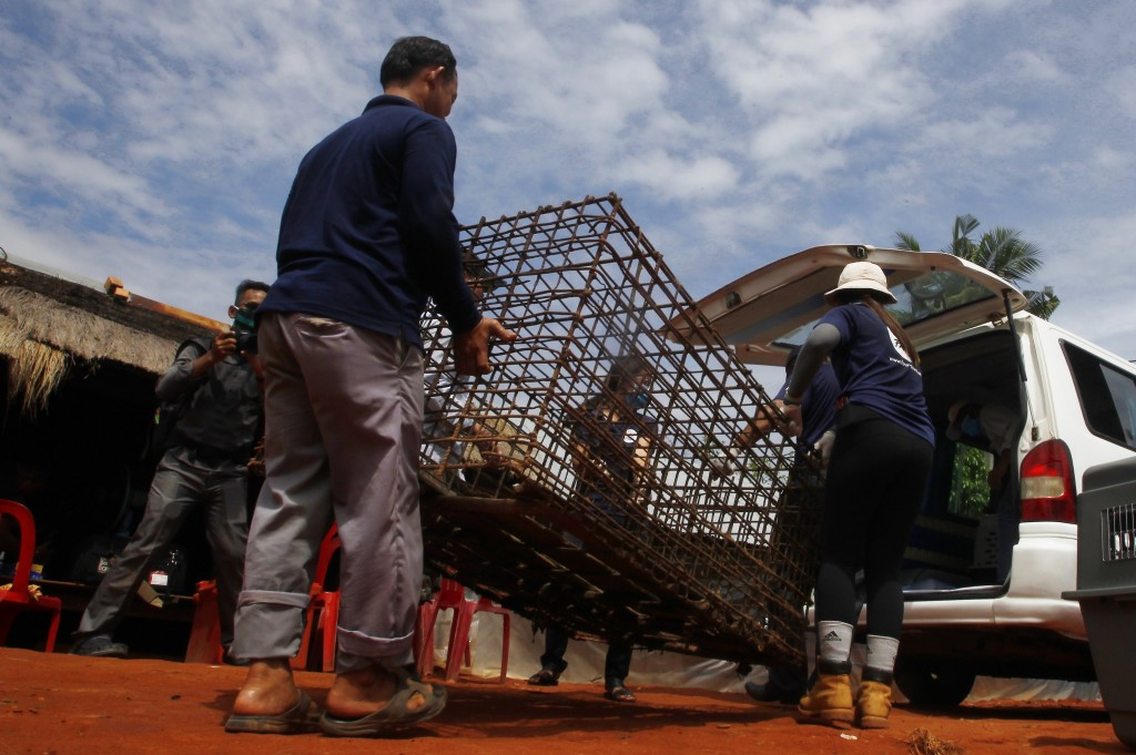 Buth Pith, left, a slaughterhouse owner helps staff members of FOUR PAWS International, to placing his big dog's cage into a van at Chi Meakh village ...