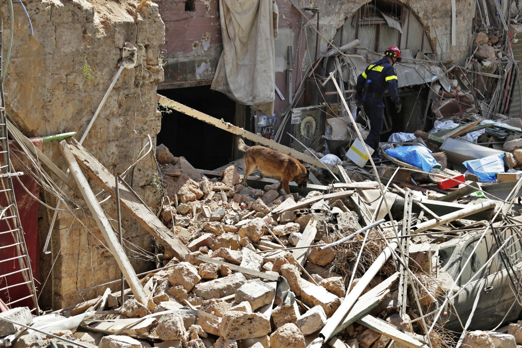 A French fireman and a rescue dog search in the rubble of a building after the Tuesday explosion at the seaport of Beirut, in Beirut, Lebanon, Thursda...