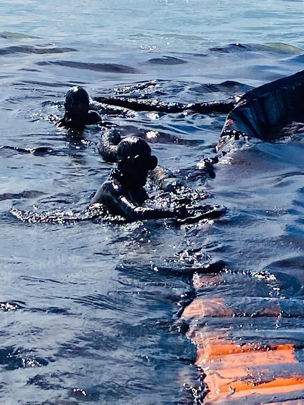 This photo taken and provided by Georges de La Tremoille of Mu Press shows divers using a containment boom to help contain oil leaking from the MV Wak...