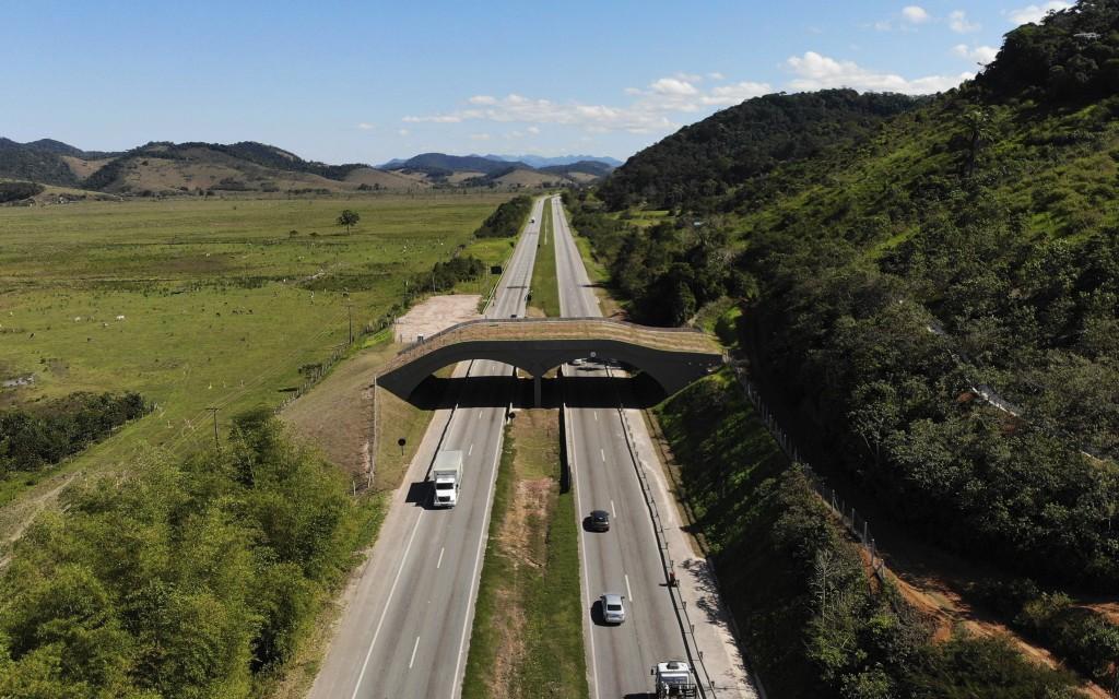 An eco-corridor for the endangered Golden Lion Tamarin crosses over an interstate highway in Silva Jardim, Rio de Janeiro state, Brazil, Thursday, Aug...
