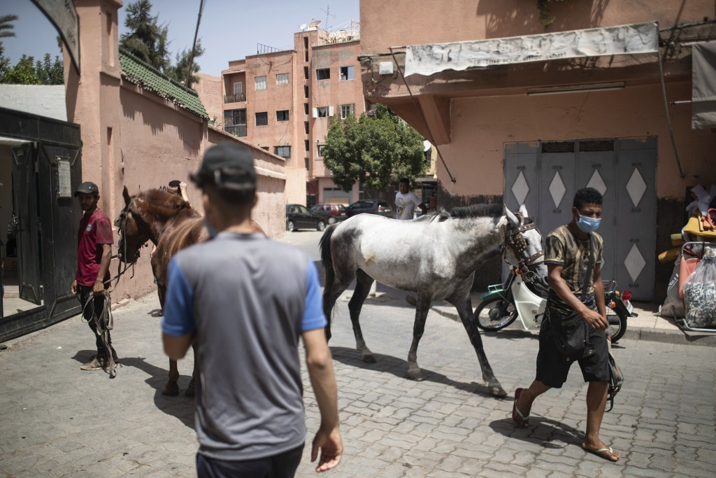 Animal owners gather outside the SPANA shelter to have them inspected, in Marrakech, Morocco, Wednesday, July 22, 2020. Morocco's restrictions to coun...