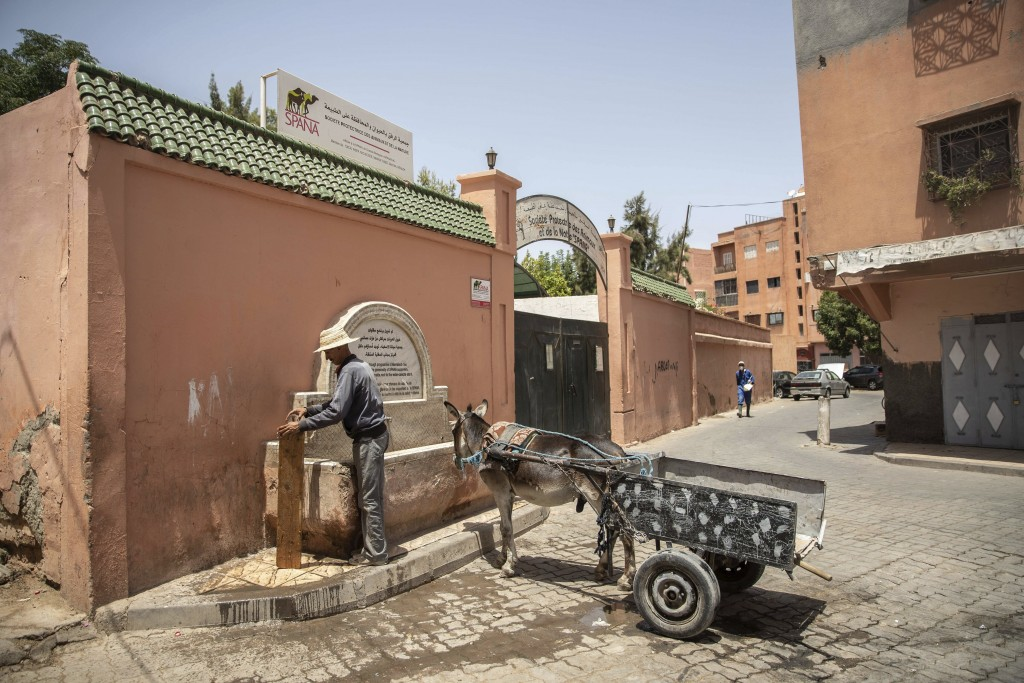 A merchant stops his donkey cart at a water fountain on a hot summer day in Marrakech, Morocco, Wednesday, July 22, 2020. Morocco's restrictions to co...