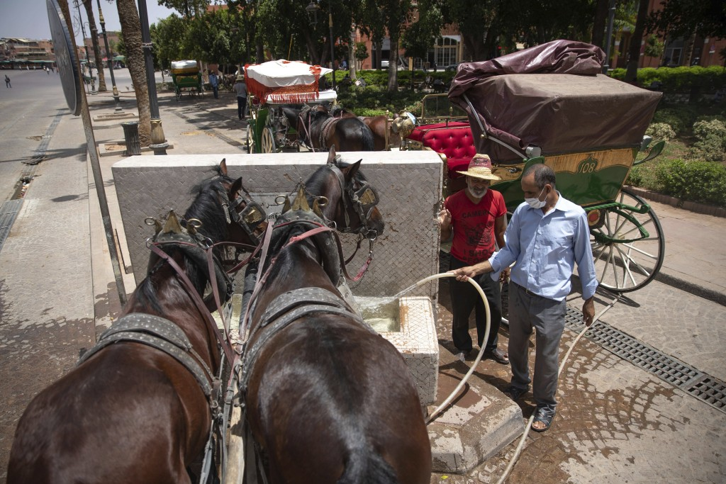 Horse-carriage owners feed their horses at a fountain as they wait for customers on a hot summer day in Marrakech, Morocco, Wednesday, July 22, 2020. ...
