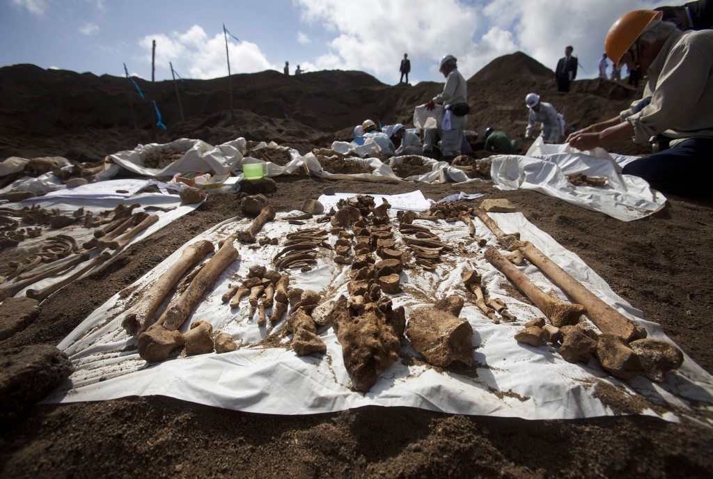 FILE - In this Dec. 14, 2010, file photo, the remains of Japanese soldiers, who died in the battle for Iwo Jima, lie on sheets as people exhume the re...