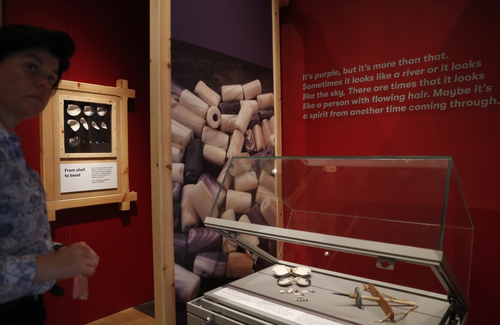 Co-curator Jo Loosemore looks at a display of the white and purple shells of whelks and quahog, the type of shells that went into the making of a wamp...