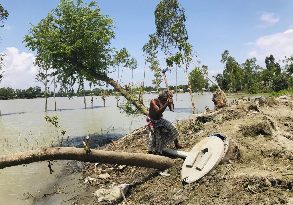 A Bangladeshi elderly person cuts an uprooted tree as the area around him is seen submerged with flooded waters in Manikganj, some 100 kilometers (62 ...