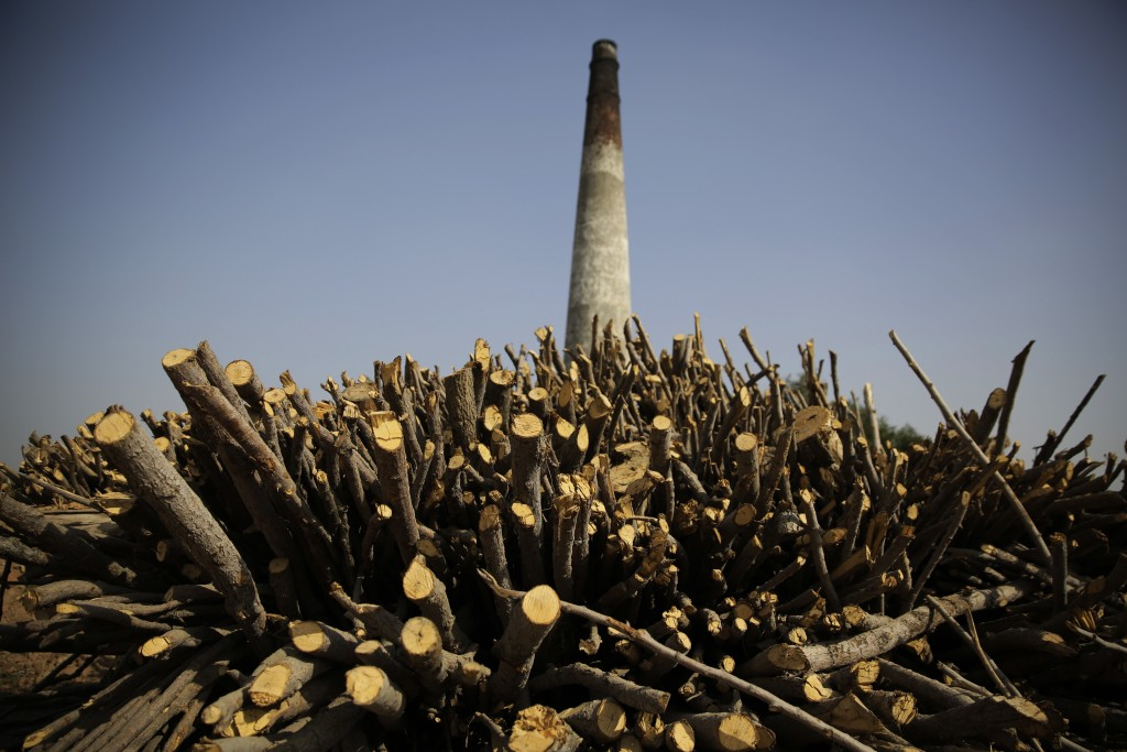 FILE- In this Oct. 17, 2018 file photo, firewood is stacked up beside a brick kiln near Mathura, India. India should commit to carbon neutrality by en...